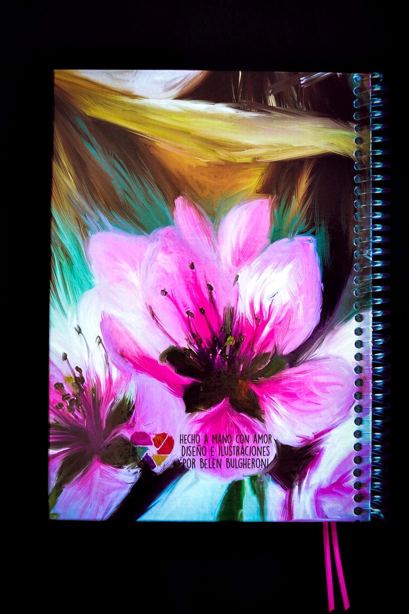 Cuadernos ilustrados 0