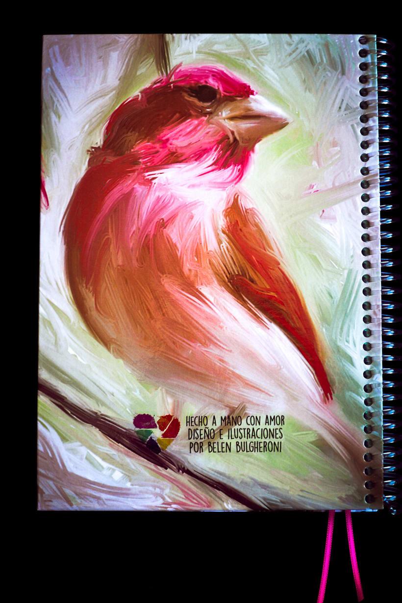 Cuadernos ilustrados 4