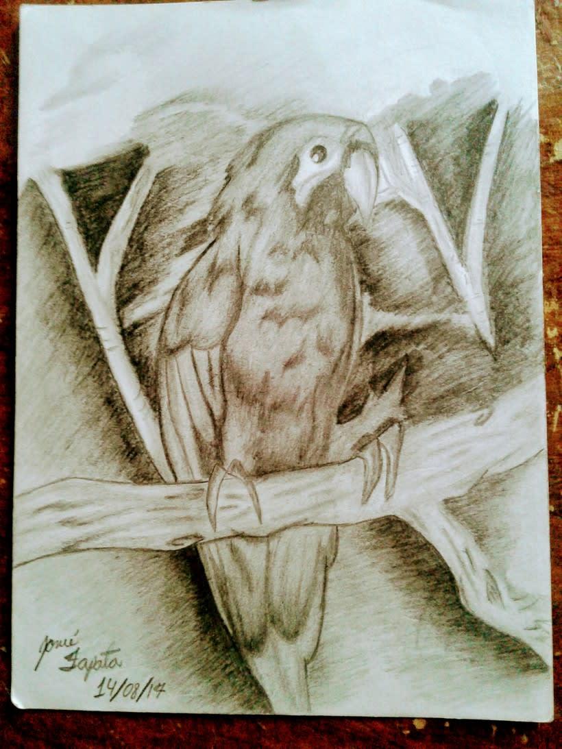 Mi primer dibujo -1