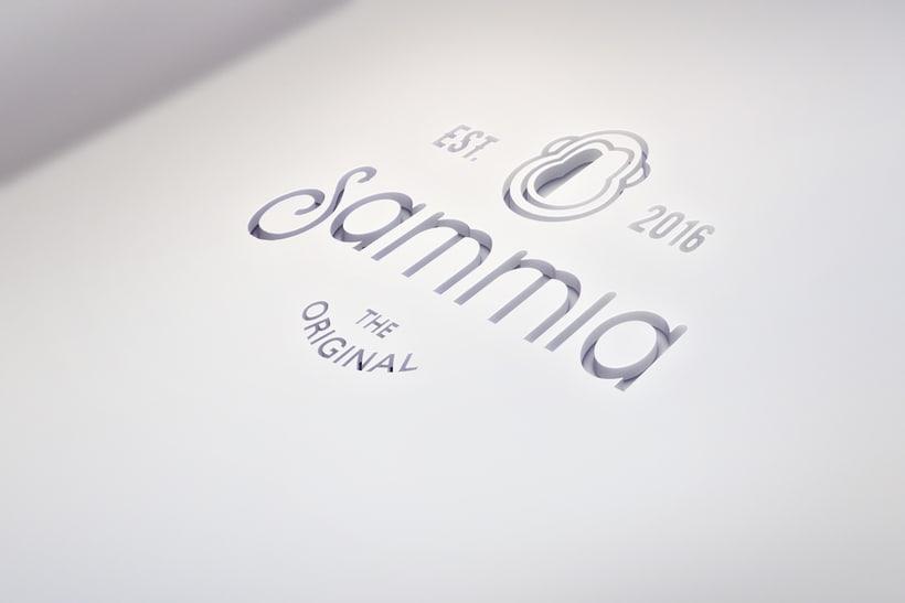 SAMMIA 2