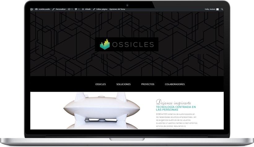 Web Ossicles 1