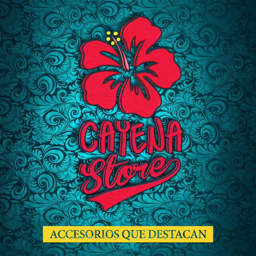 Creación y animación de logo para Cayena Store   Branding 1