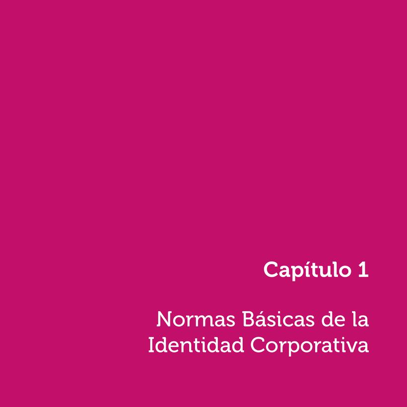 """Manual de Identidad Corporativa """"Pimentón"""" 3"""