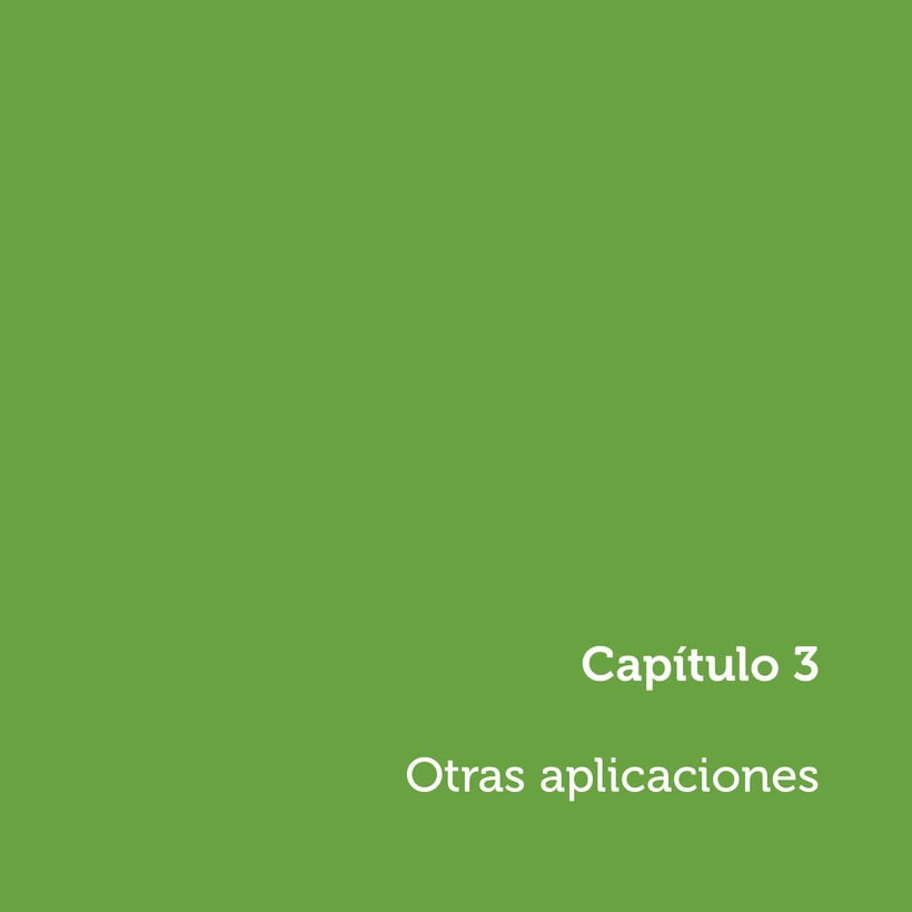 """Manual de Identidad Corporativa """"Pimentón"""" 7"""