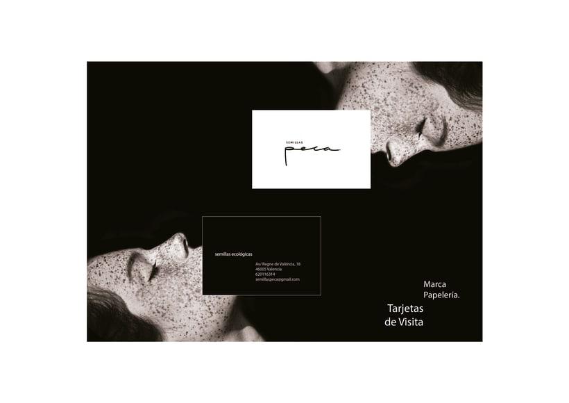 Peca: Manual de imagen y estilo visual corporativo 3