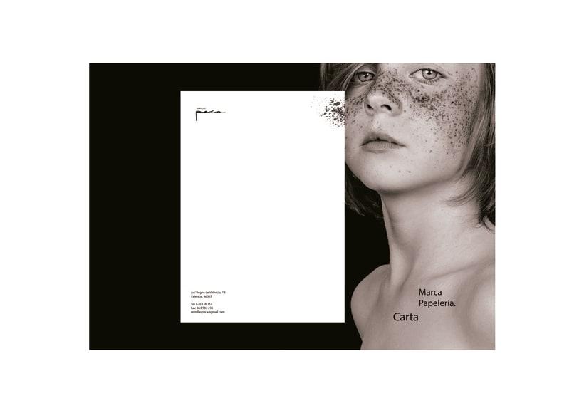 Peca: Manual de imagen y estilo visual corporativo 5