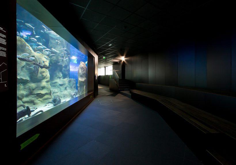 Aquarium Donostia-San Sebastián 3