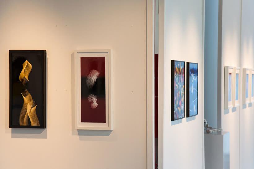 Comisariado de exposición de fotografía abstracta (2017) 5
