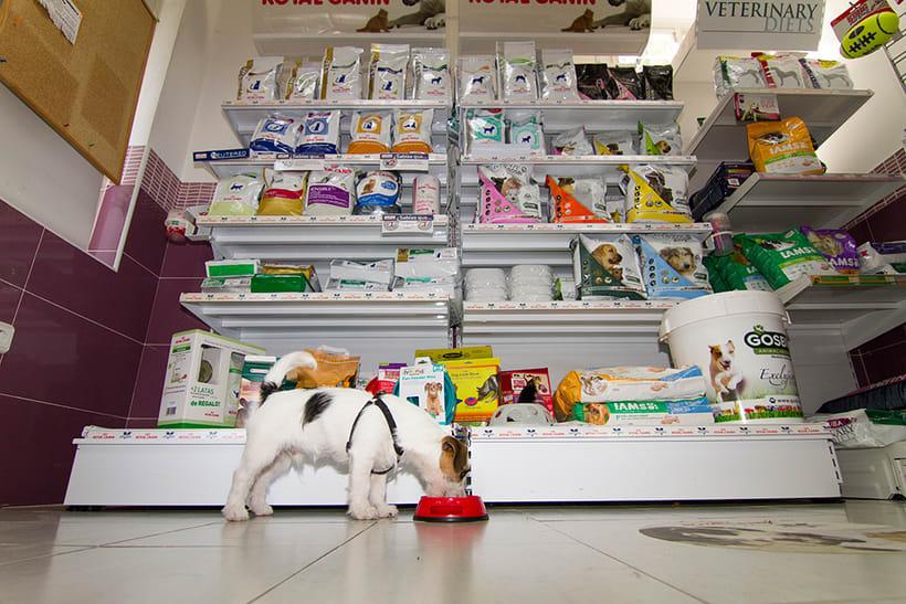 Fotografía corporativa de la clínica veterinaria Salvatierra (2016) 1