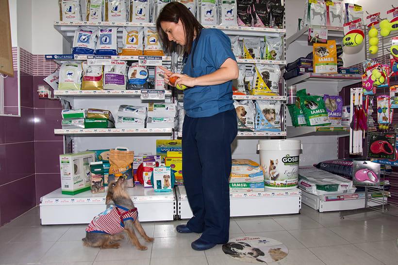 Fotografía corporativa de la clínica veterinaria Salvatierra (2016) 0