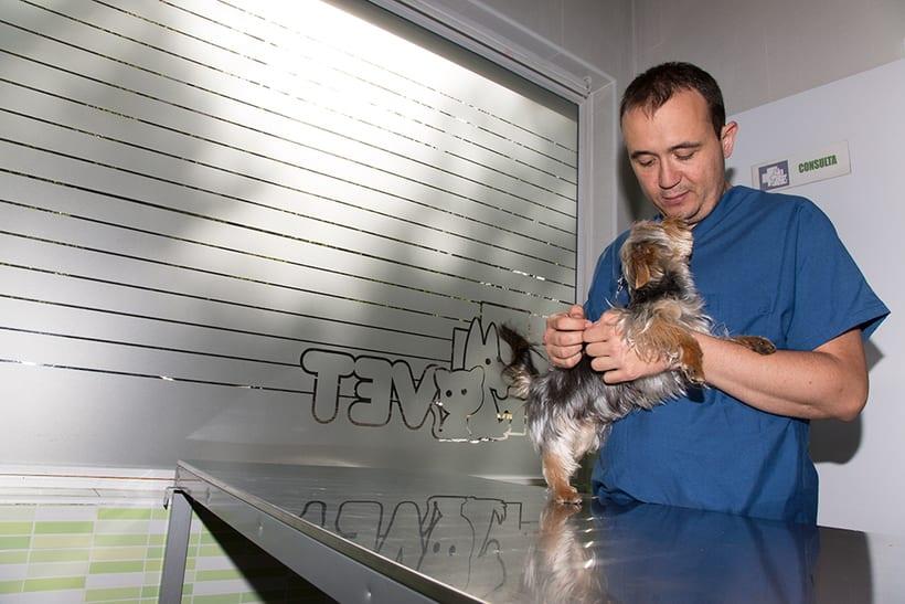 Fotografía corporativa de la clínica veterinaria Salvatierra (2016) 6