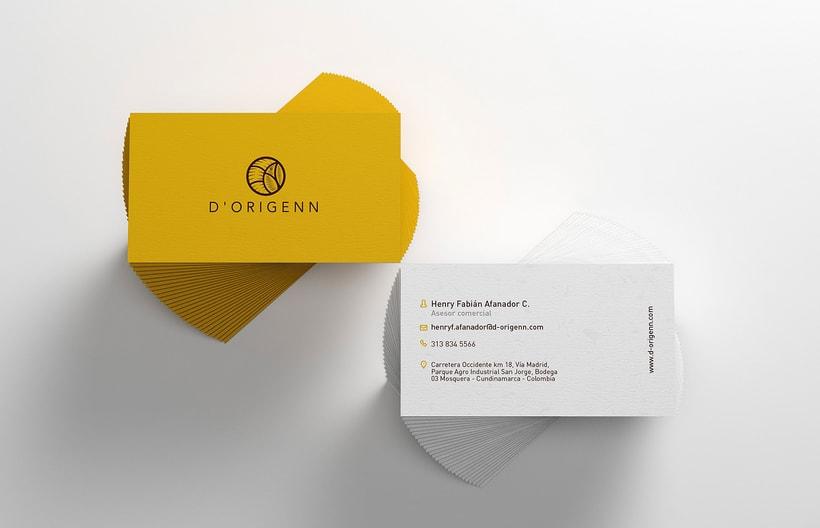 Dorigenn Logo and Identity 4