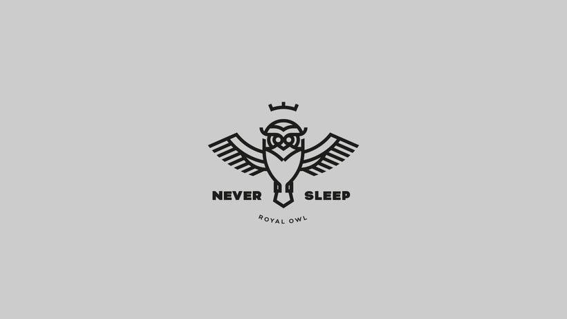 Never Sleep. Fyero Studio 1