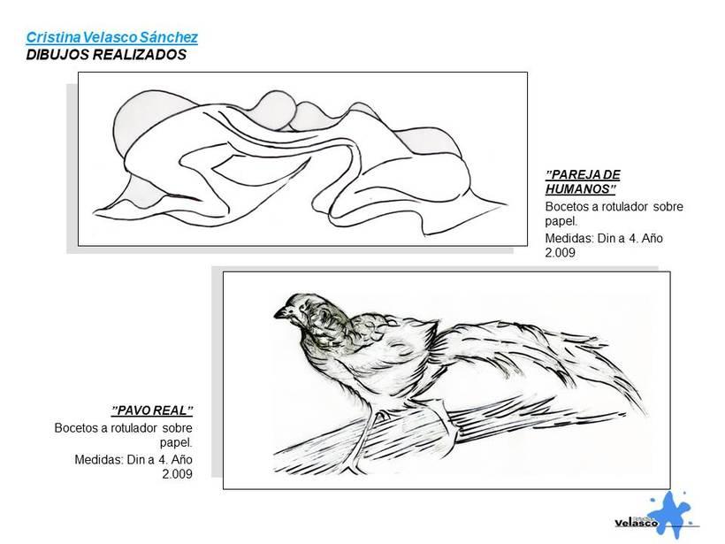 Ilustraciones 24