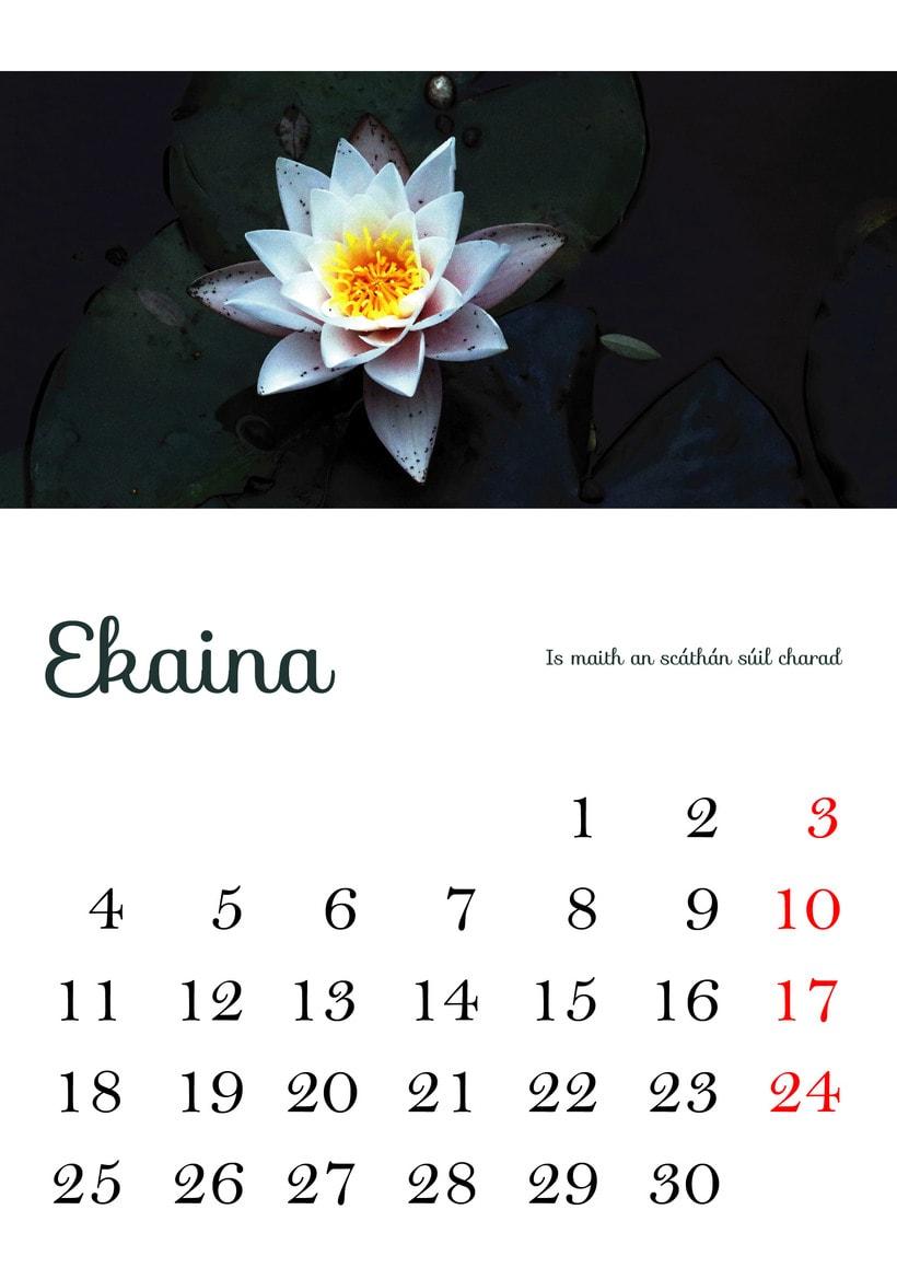 Calendario 2018 5
