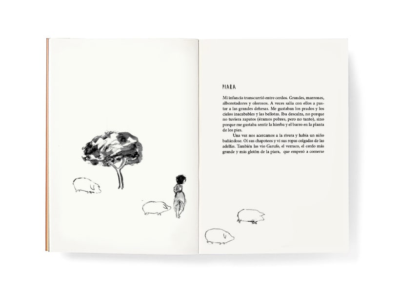Piara. Ilustraciones y diseño. 12