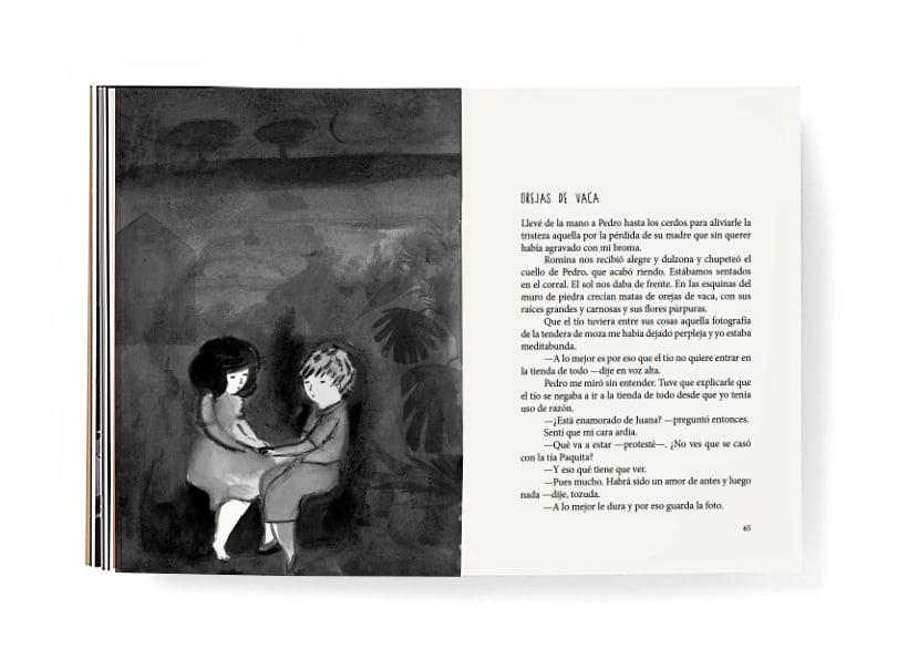 Piara. Ilustraciones y diseño. 15