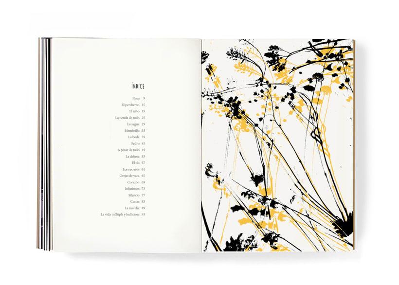 Piara. Ilustraciones y diseño. 17