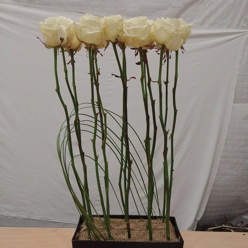 Centro Formal Paralelo en formación. Arte Floral 3