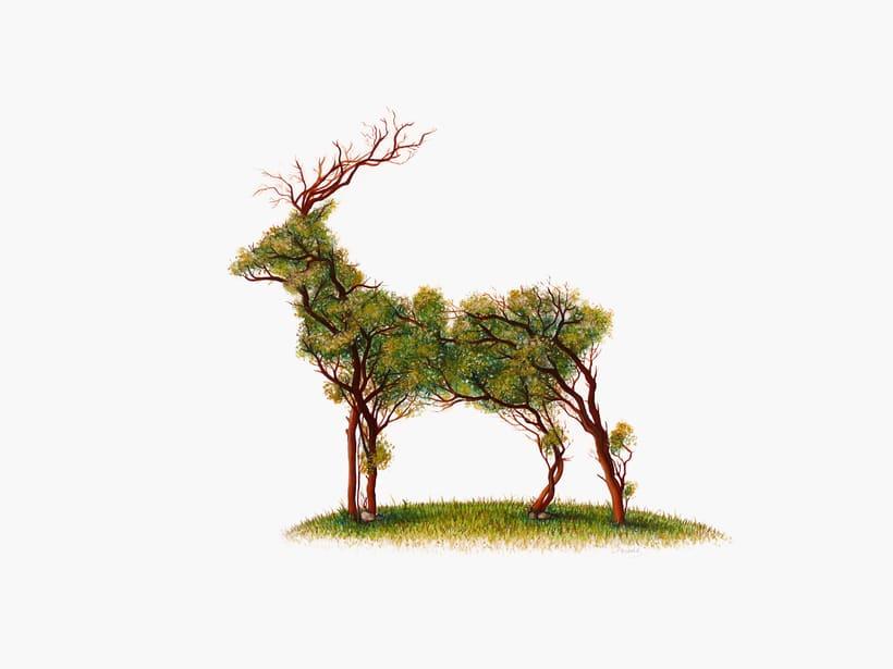 """""""De la tierra"""" Dibujos de doble sentido (técnica mixta) 1"""