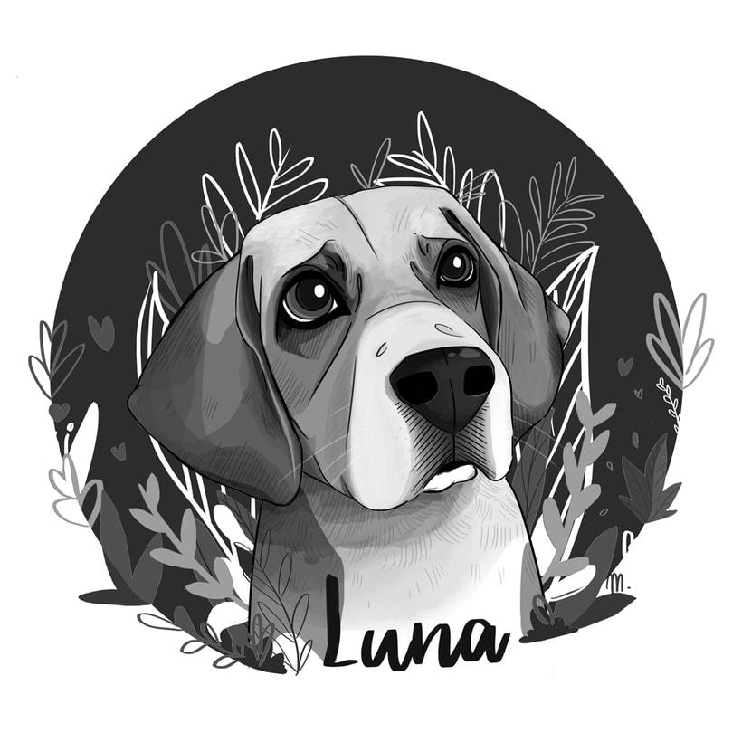 Luna. Ilustración para el recuerdo. 3