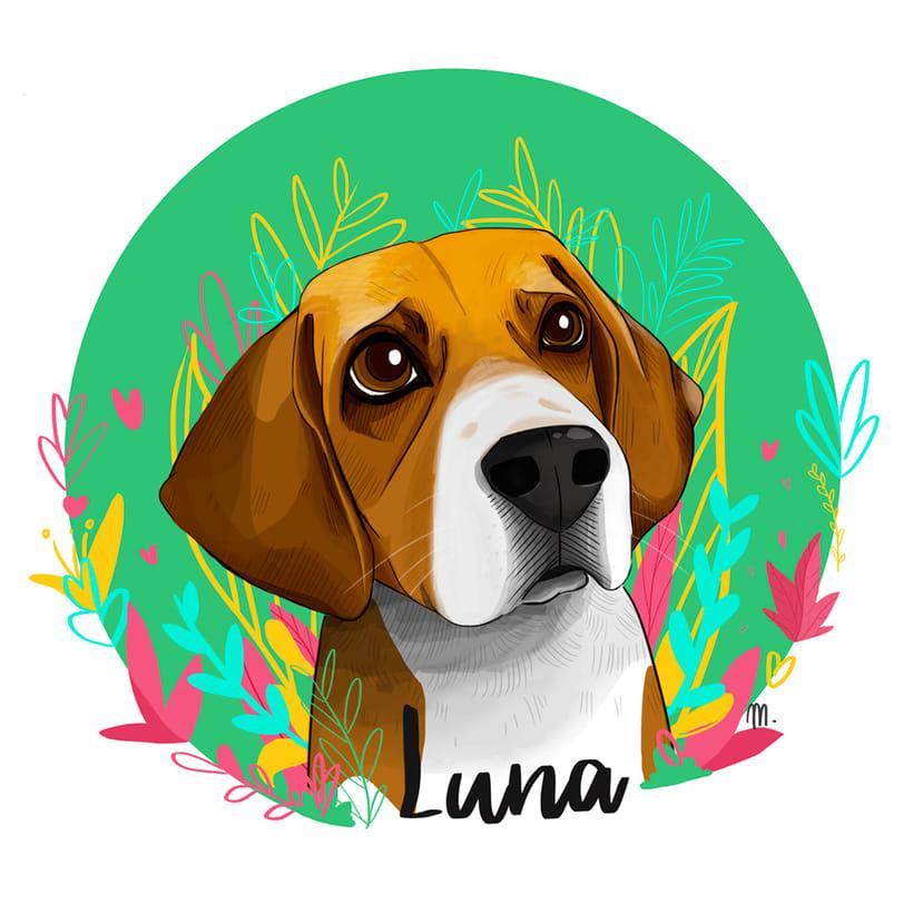Luna. Ilustración para el recuerdo. 5