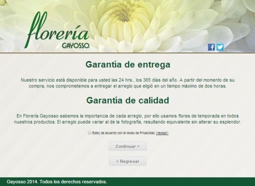 GAYOSSO / Web / Lanzamiento: Florería en línea / 2014 4