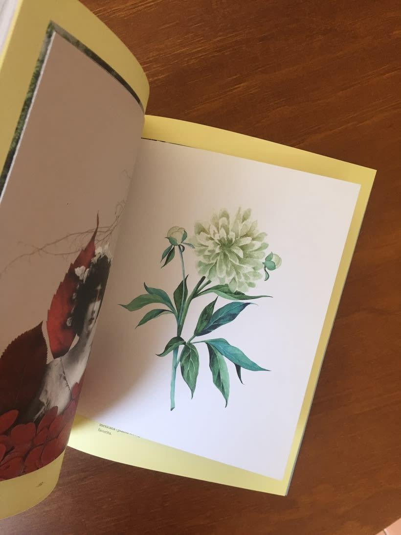 Cream Magazine - postales 2