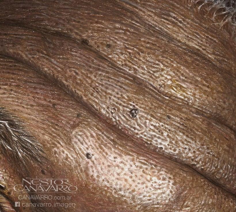 Morgan Freeman en Lápices de Colores 8
