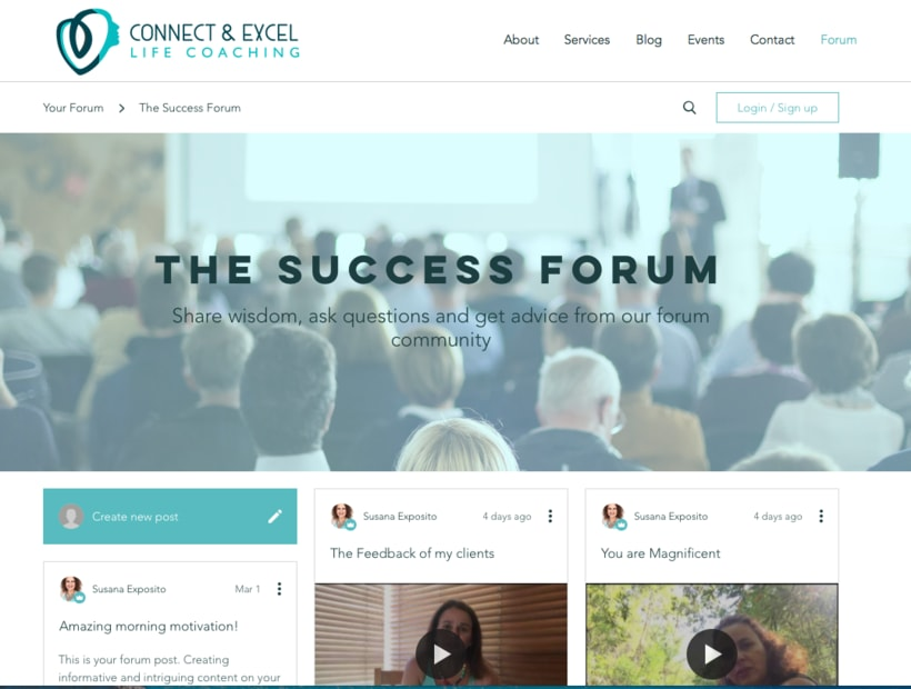 Connect and excel coaching website 0