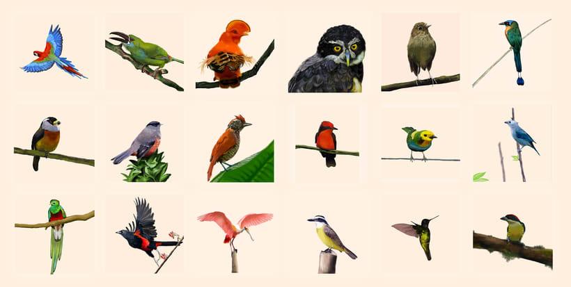 Aves - Biodiversidad 0