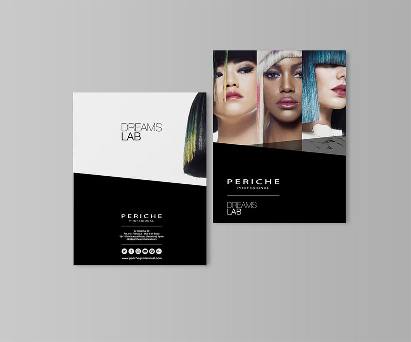 Branding - Periche Profesional 2