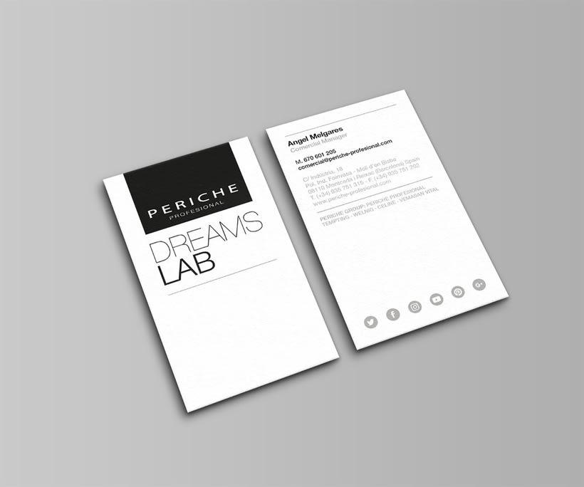 Branding - Periche Profesional 4