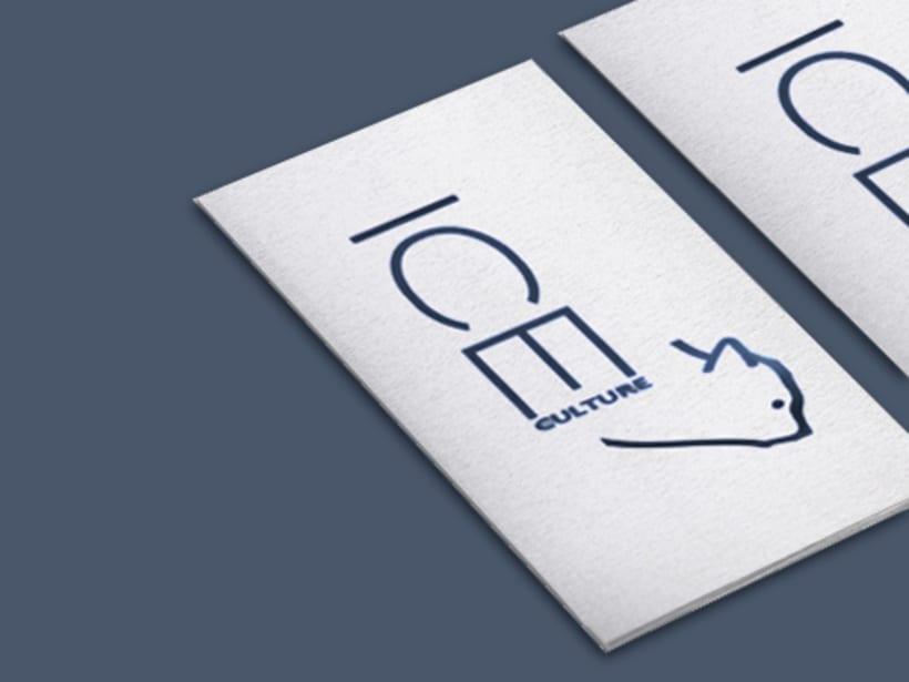 ICE CULTURE - Branding & Packaging 2