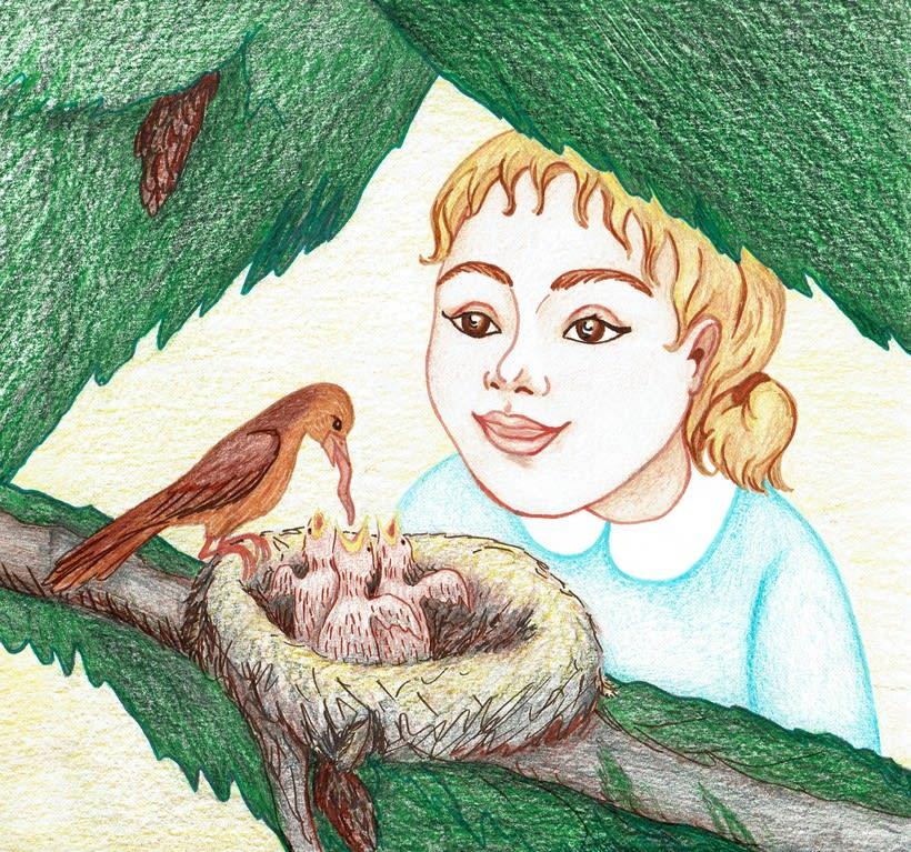 Ilustración de un cuento: L'Avet Màgic 3