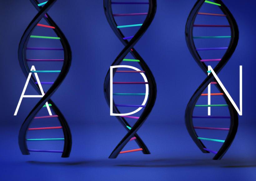 ADN -1