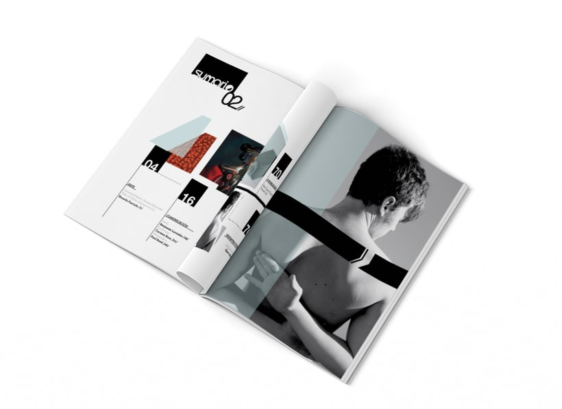 Proyecto de Diseño Editorial (Interior). 0