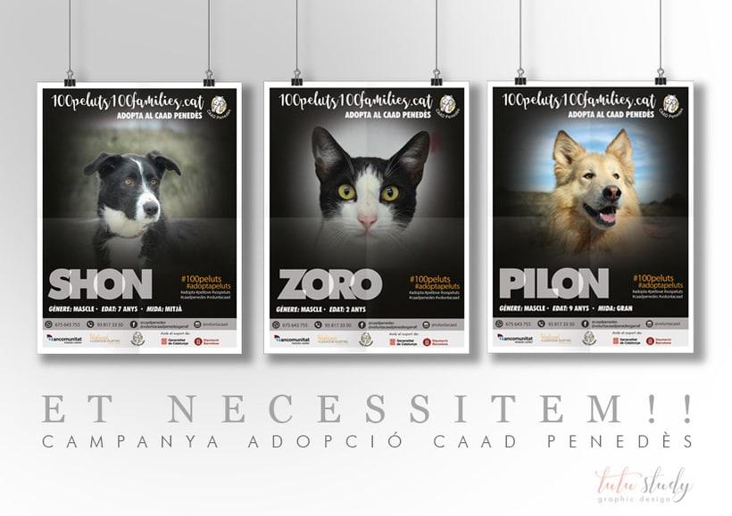 Campanya publicitària d'adopció animals 0