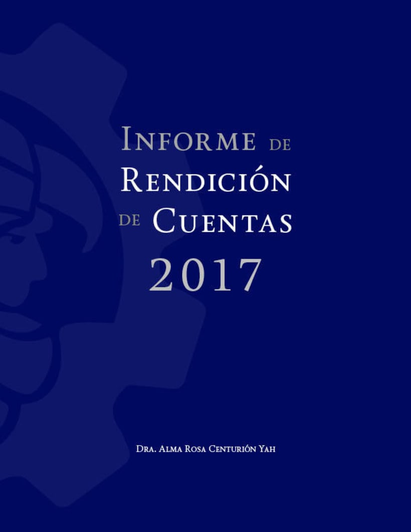 Mi Proyecto del curso: Ejemplo de Informe de Rendición de Cuentas 1