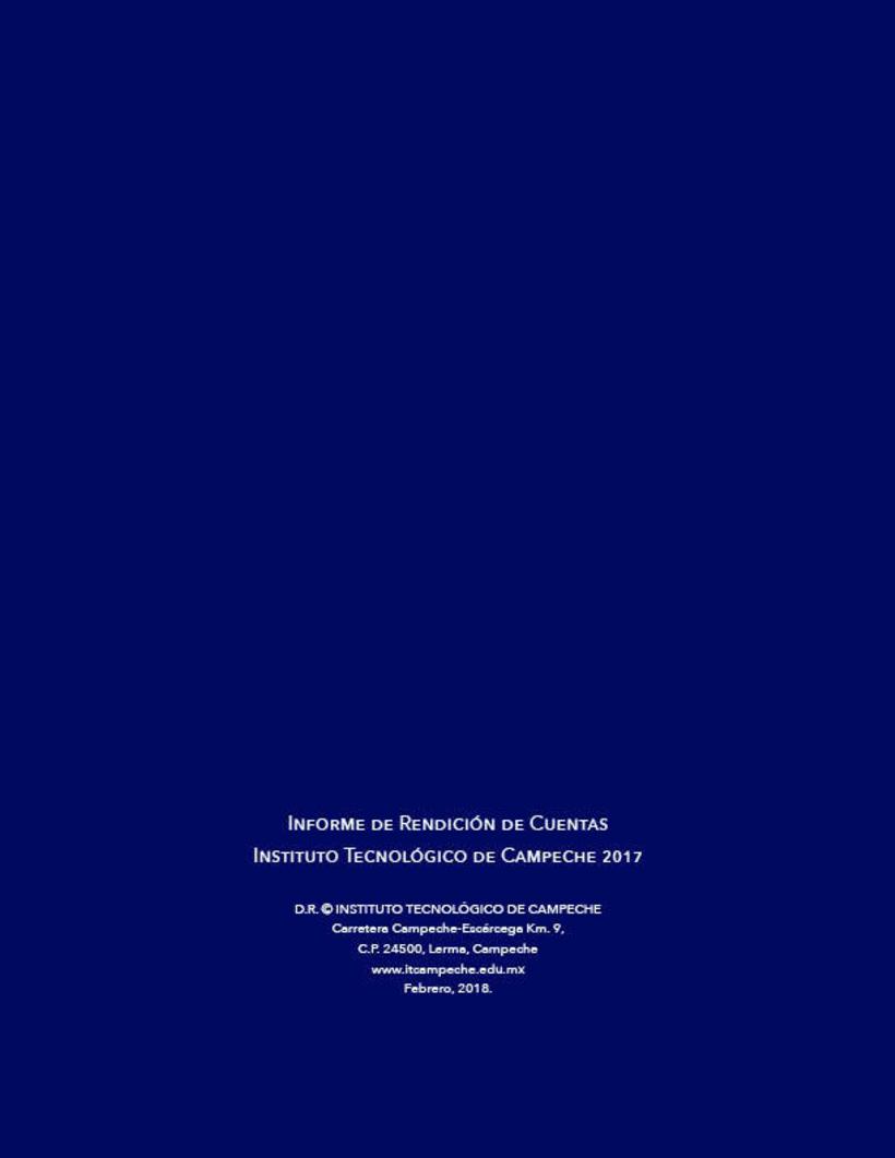 Mi Proyecto del curso: Ejemplo de Informe de Rendición de Cuentas 14