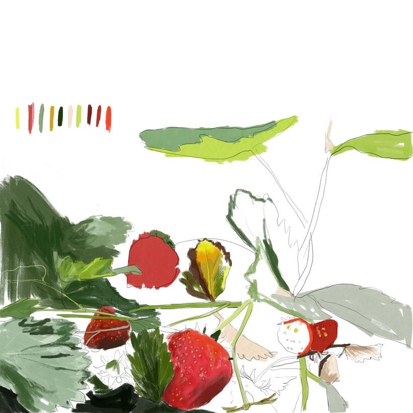 Garden Series 2