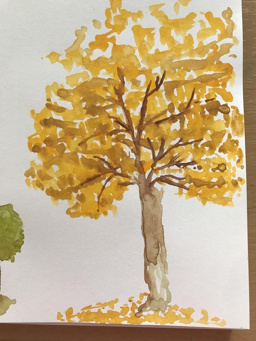 Mi Proyecto del curso: Dibujo para principiantes nivel -1 24