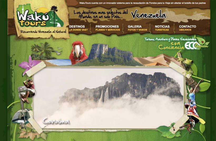 Desarrollo sitio Web Wakutorus.com 0