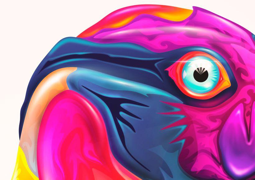 Animalística Misionera: Zopilote Rey - Speed Painting 4