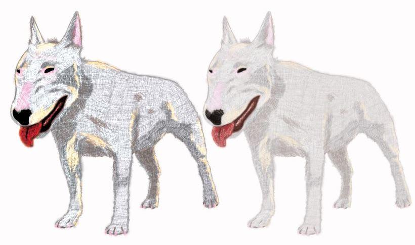 Mi Proyecto del curso: Ilustración digital con lápices de colores 2