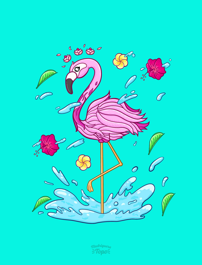 Flamingo Splash -1