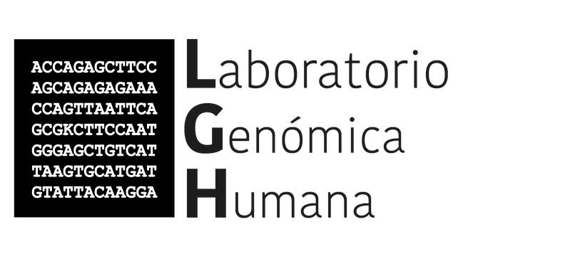 Identidad visual - LGH - -1