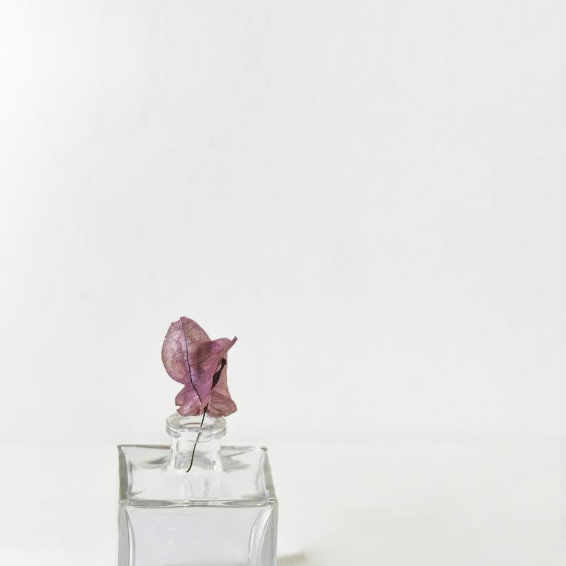 Fotos minimalistas y bodegón moda 1