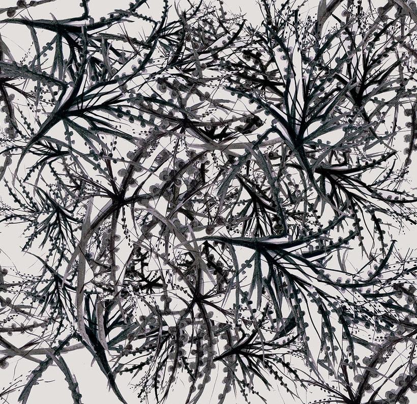 Ramas/ Pattern .Tinta sobre papel. 0