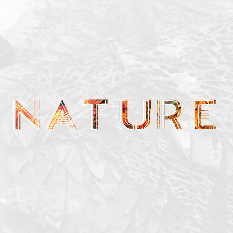 NATURE -1